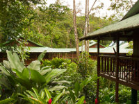 Lodge Selva Verde